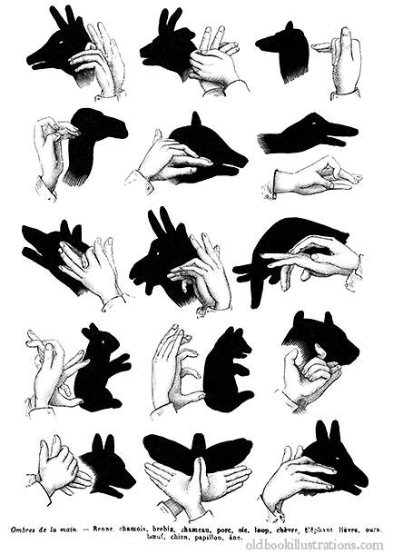 Hand shadow puppetry