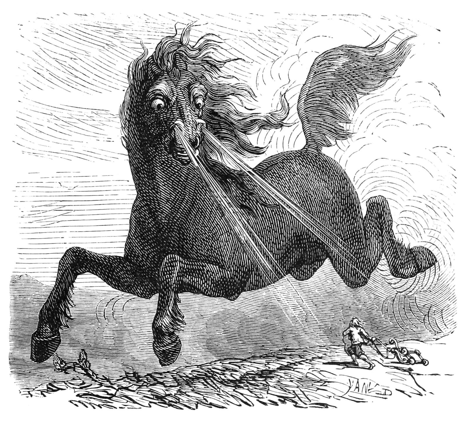 Horse As Big As An Elephant Old Book Illustrations