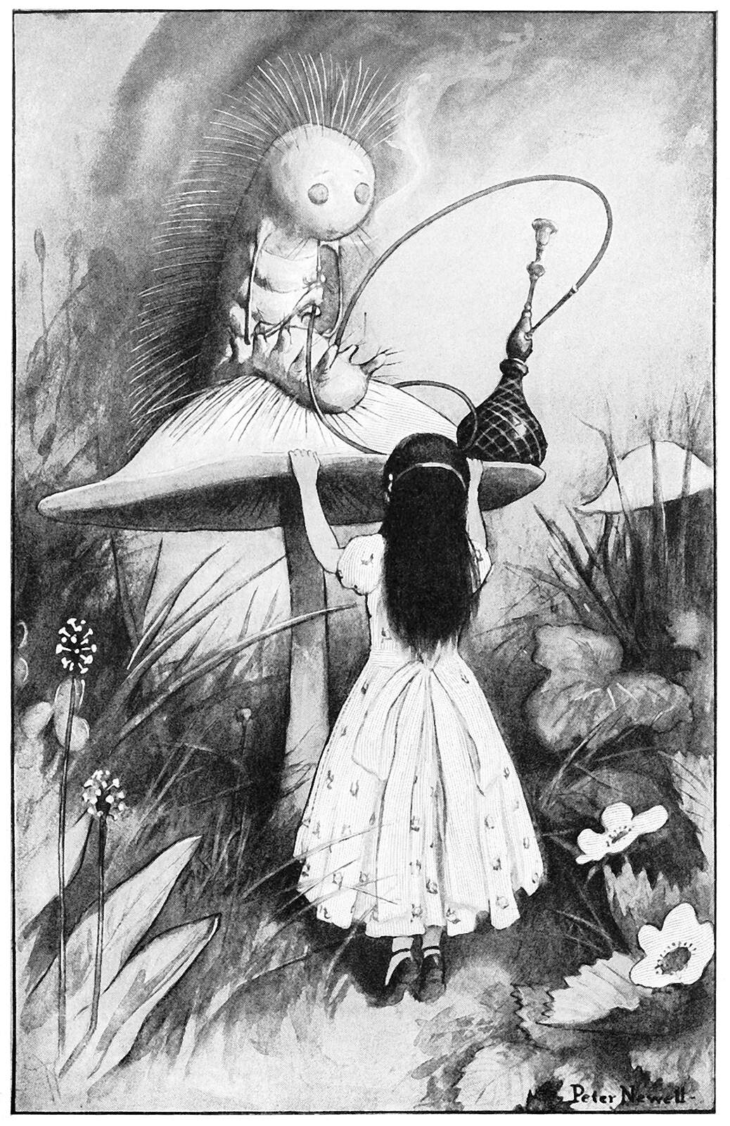 caterpillar and alice � old book illustrations