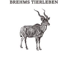 Illustrations from Brehms-Tierleben