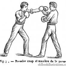 Boxing: strike and parry 1