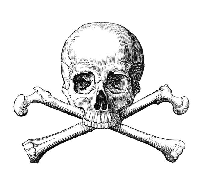 Skull And Crossbones Old Book Illustrations