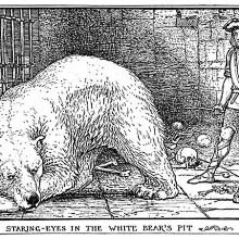 A young man is locked up in a vault with a white bear