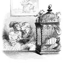 A birds lies dead inside a cage while monkeys are kissing in the background.