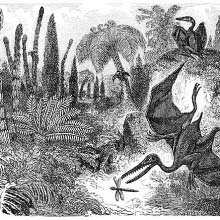 View of the Earth in the Early Jurassic epoch showing a flying pterodactylus