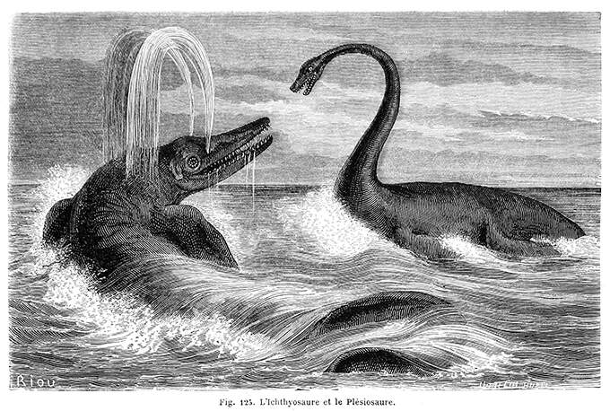 An ichthyosaur and a plesiosaurus are facing each other in the sea