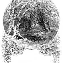 A young man sits reclining against a large dead tree on the bank of a brook