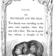 A bear looks closely at man lying on the ground as a second man hides in a tree