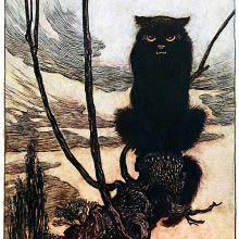 A sullen-looking black cat sits on the branch of a willow tree