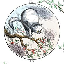 A cat with fiery eyes stands arching her back on a branch of an apple tree