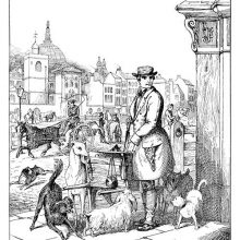 A man holding knife stands at a street corner in front a hand barrow surrounded by dogs
