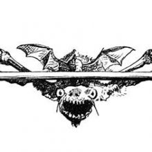 An ugly creature with bat wings is hanging on to a horizontal piece of wood, or bone