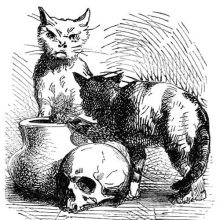 Two cats are seen around a jug and a skull, one of them looking at the viewer with a scowl