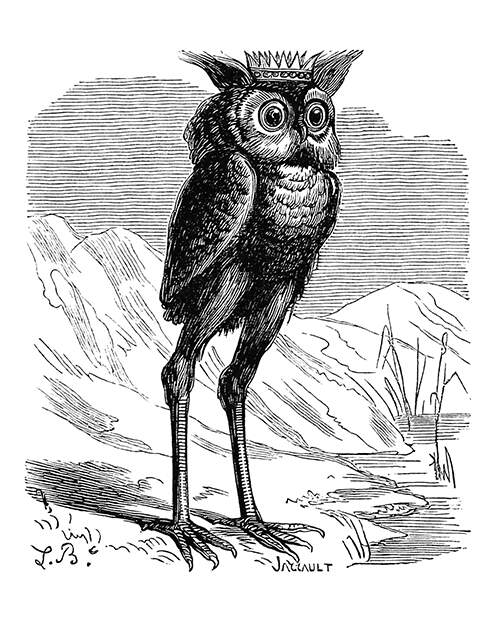 Depiction of Stolas, the Great Prince of the Underworld who appears under the guise of an owl