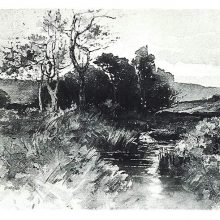 View of a clump of trees with a brook flowing toward the viewer.