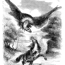 A horse rears up to defend itself against an enormous bird circling above its head