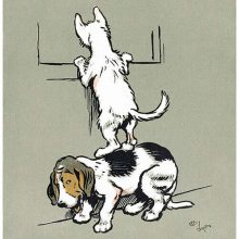 A dog stands on its hind legs on another's back in order to look through a window