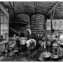 Interior view of a public Wash house showing women doing laundryand large wooden vats