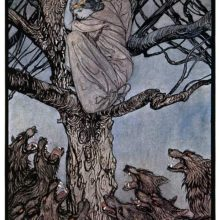A distressed woman has found refuge in a tree from a horde of wolves snarling below her