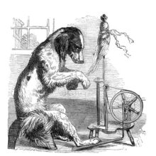 A dog is operating a spinning wheel while giving the viewer an annoyed sideways look