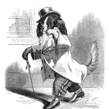 A dog is walking down the street in gentleman's clothes, looking at the viewer through his monocle