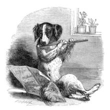 A dog is sitting on the floor, playing the flute with sheet music spread out in front of him