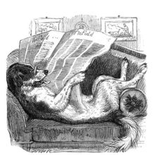 A dog is comfortably lying on a couch, reading a newspaper with his glasses on