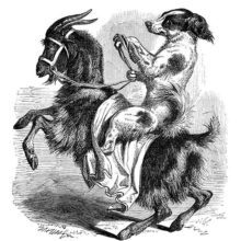 A dog holds the reins of the rearing up goat he is riding while looking sideways at the viewer