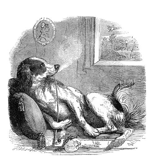 A dog is reclining on a cushion, leisurely smoking a long, chibouk-like pipe