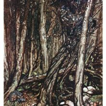 View of a dense forest with creepy creatures in a nest and gnomes walking along a rook