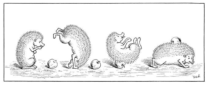 A hedgehog performs a forward roll to impale and pick up an apple on its spines