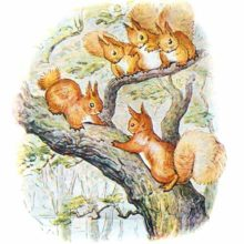 Two squirrels are facing each other belligerently on a large branch as three others sit watching