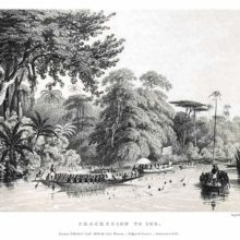 View of the river Niger and the tropical forest showing numerous rowing boats on the water