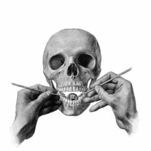 The hands of a dentist are seen demonstrating on a skull how to use a dental mirror