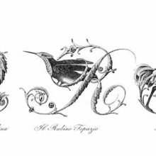 Plate showing ornamental capital letters Q, R, and S embellished with pictures of birds