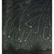 Plate showing a shower of Leonid meteors observed in November 1868